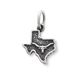 Longhorn in Texas Charm