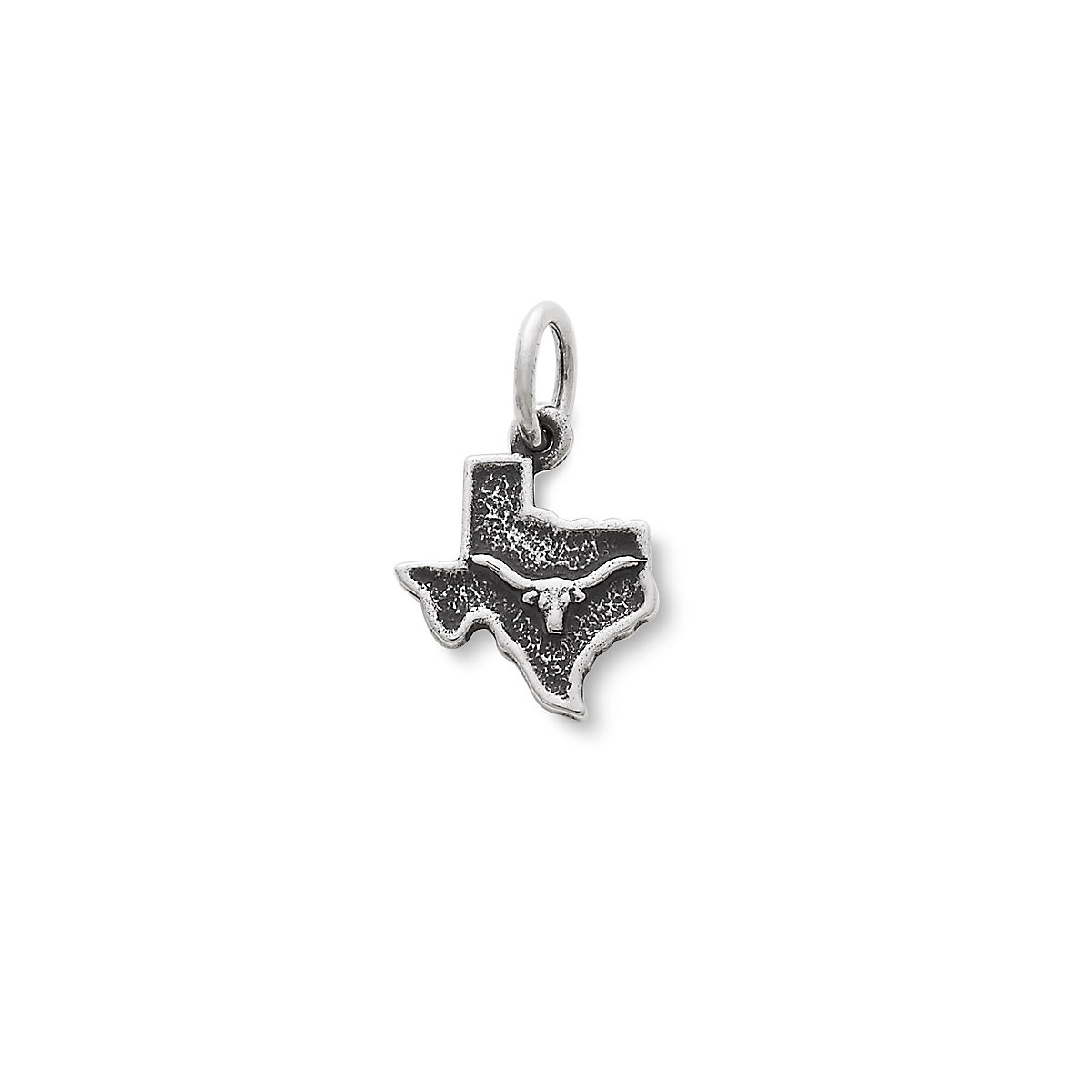 Texas texas star charms and jewelry james avery longhorn in texas charm mozeypictures Choice Image