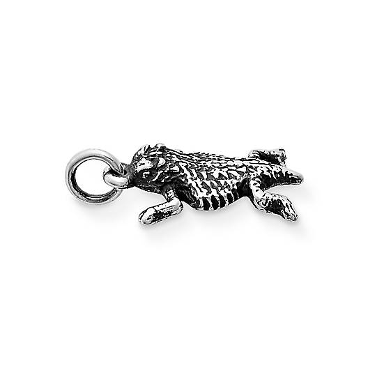 View Larger Image of Horned Toad Charm