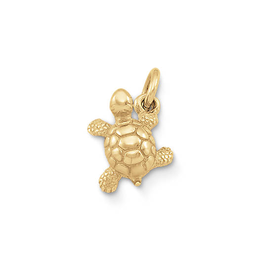 View Larger Image of Turtle Charm