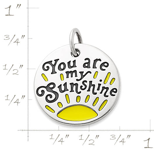 "View Larger Image of Enamel ""You Are My Sunshine"" Charm"